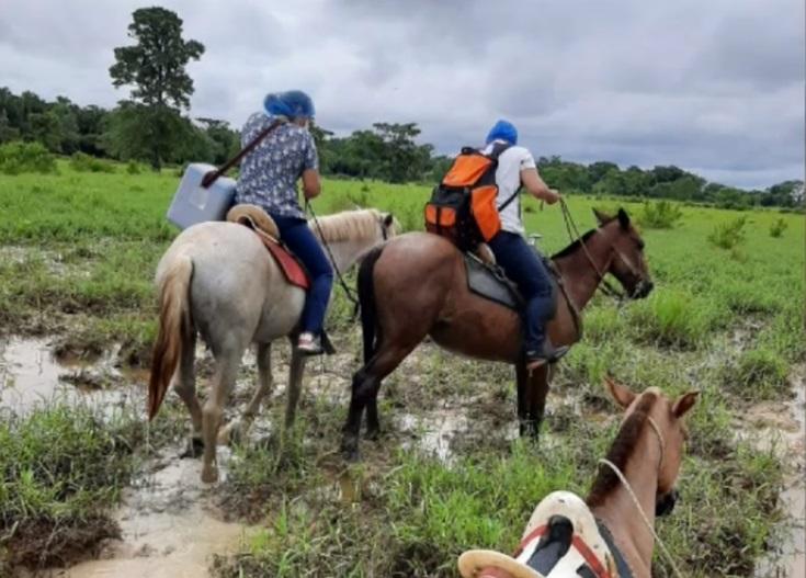 Vacunas a lomo de mula: ellas son las enfermeras que lleva las vacunas a  lugares alejados de Arauquita