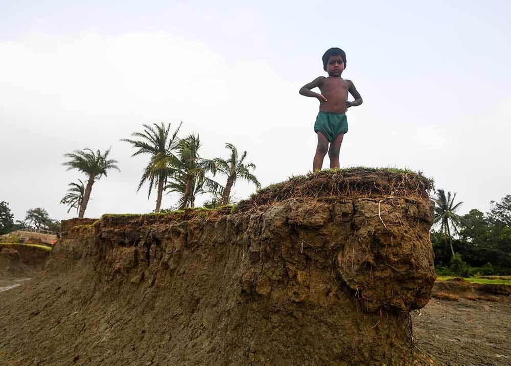 336037_Blu Radio // Extinción de plantas // Foto: AFP