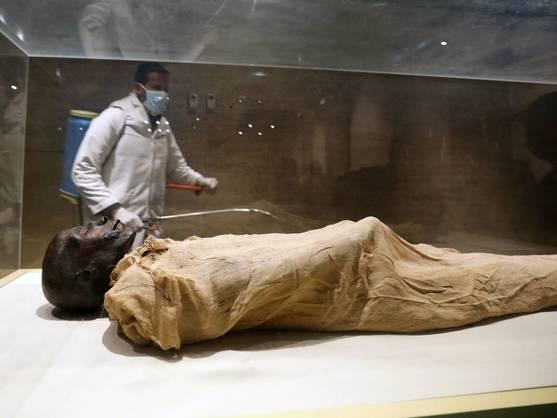 Faraón Seqenenra Taa II
