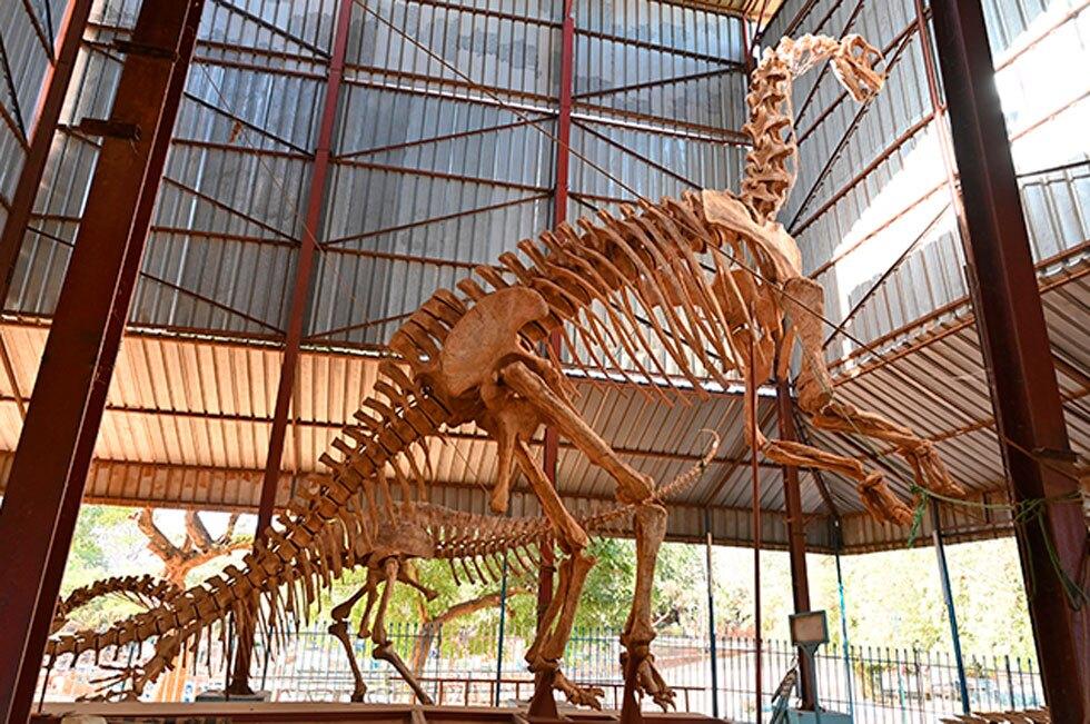 Dinosaurio en el Museo Nacional de Níger