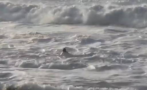 Mujer arrastrada por las olas del mar en Hawái.PNG