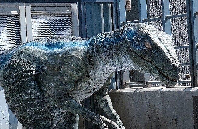 dinosaurio raptor referencia_afp.jpg