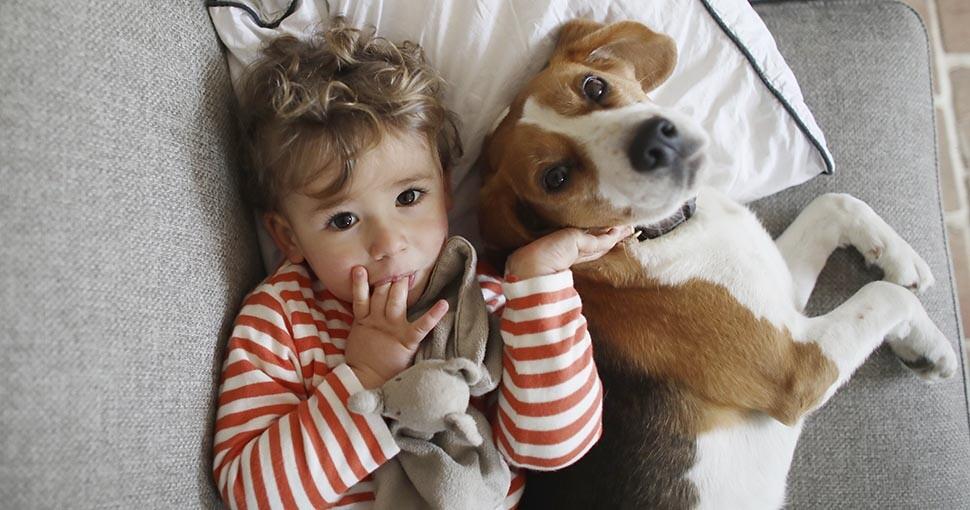 Perros en el crecimiento de los niños