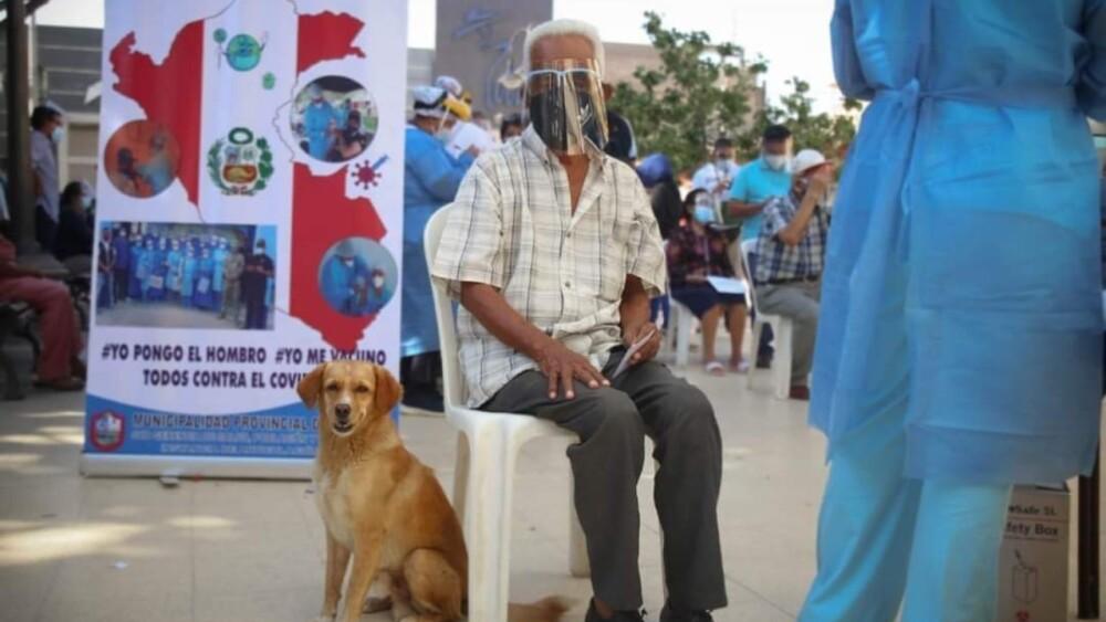 adulto mayor que se fue a vacunar con su perro en peru.jpg