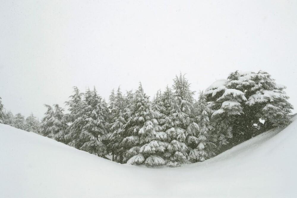 Lugar con nieve