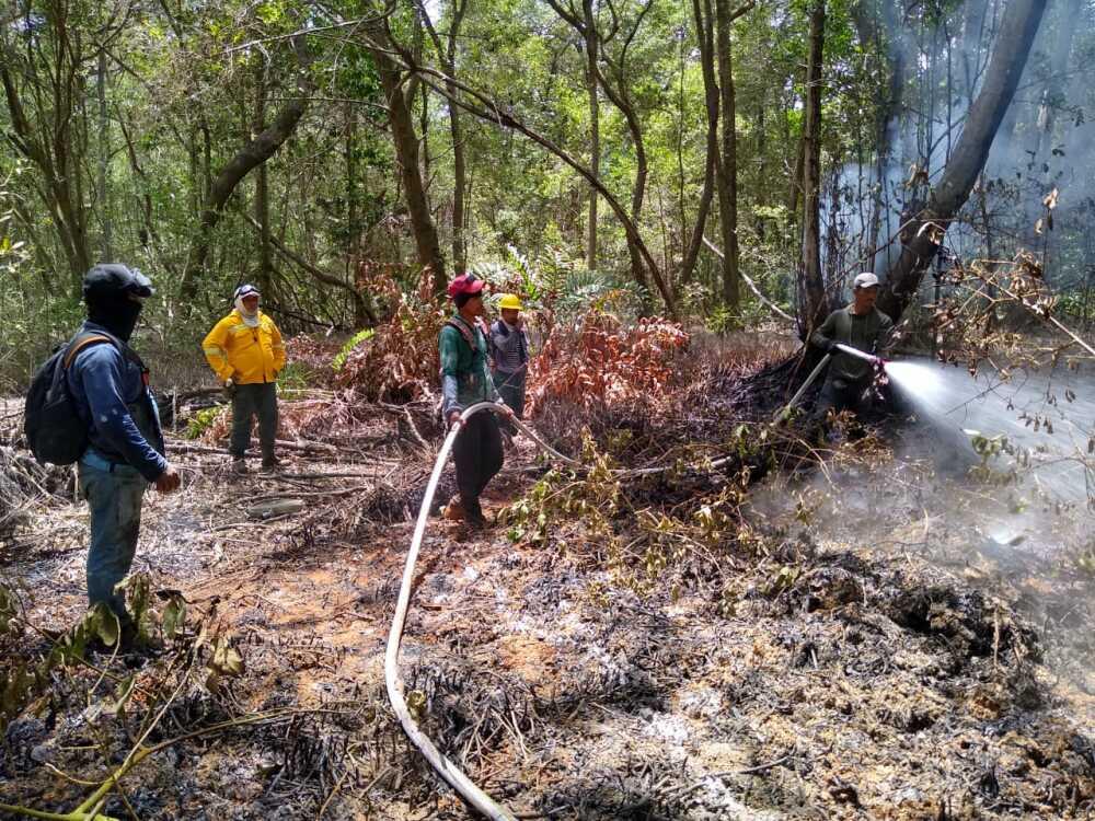 368971_BLU Radio // Incendio Vía Parque Isla Salamanca // Foto: Parques Nacionales de Colombia