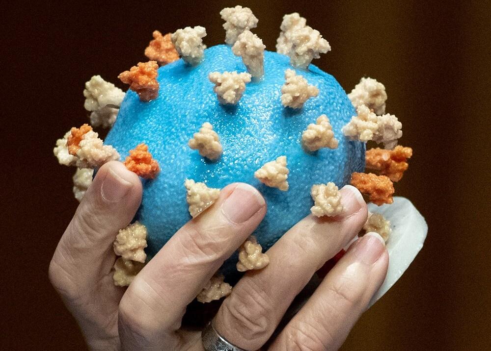 369797_Modelo del virus COVID-19 // Foto: AFP