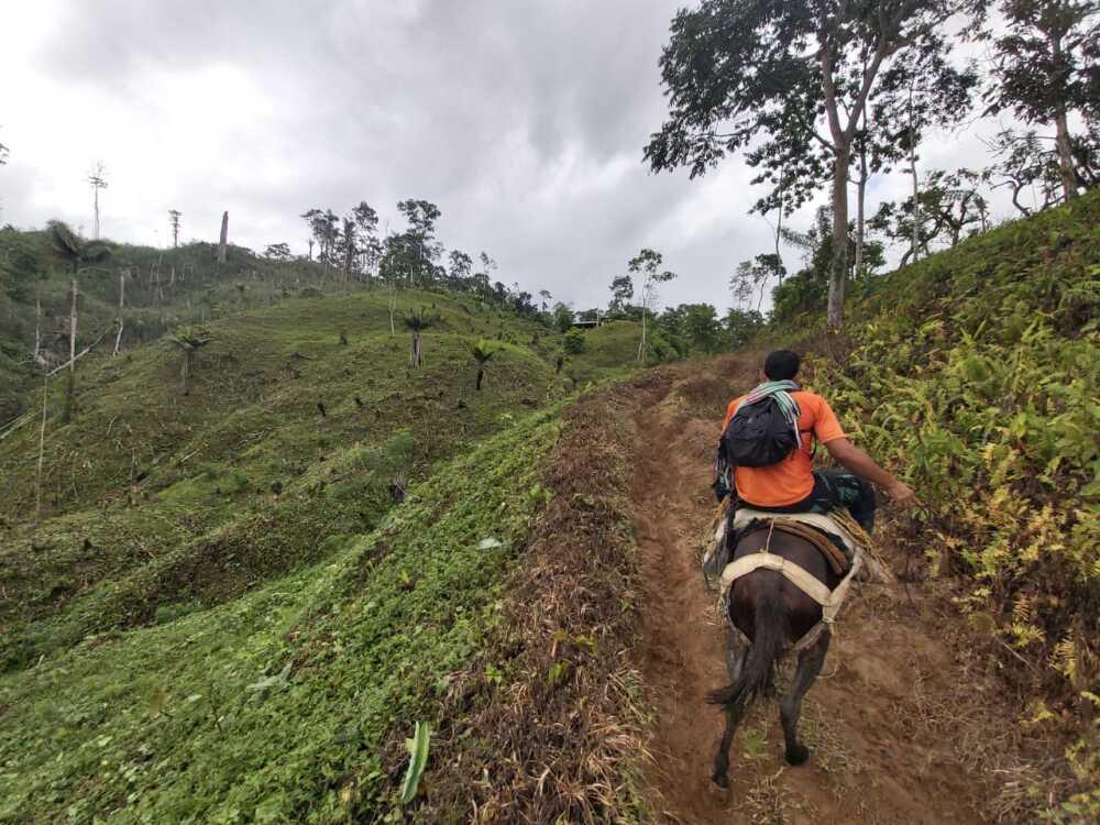 Derechos Humanos Antioquia.jpeg