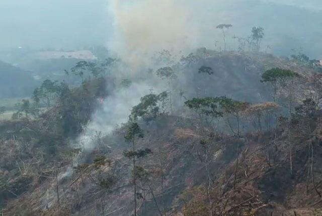 Incendio en el corregimiento de Porce, Santo Domingo, Antioquia / Cortesía Dapard.