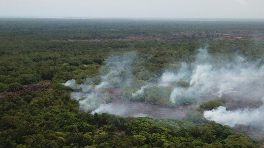 373714_BLU Radio //El viento propagó el fuego que arde en el Parque Isla de Salamanca // Foto: Alcaldía de Barranquilla