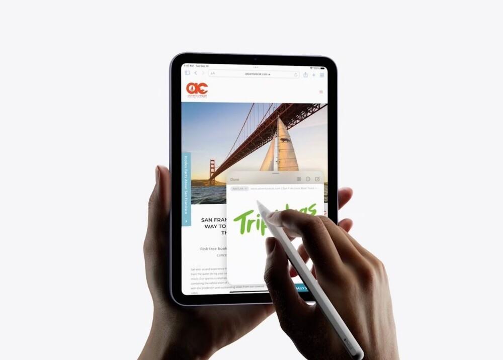 iPad Mini_Foto_Twitter applesfera.jpg