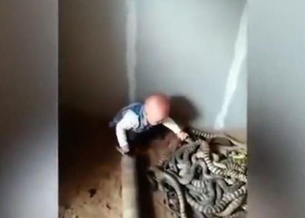 12233_La Kalle. Niño que coge culebras con la mano / Foto: captura de video