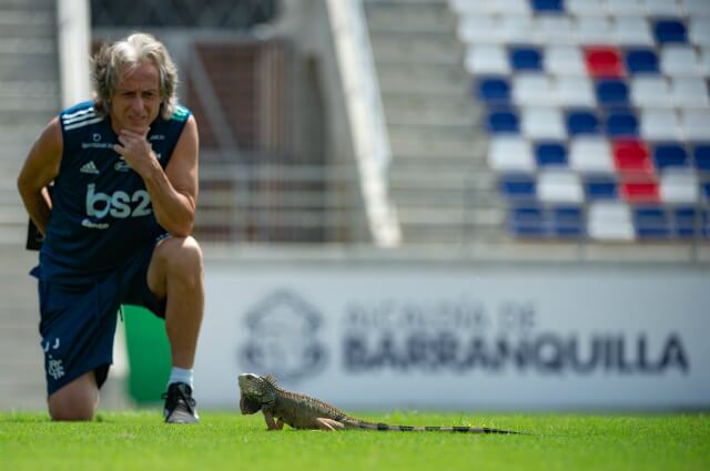 332043_Jorge Jesús, técnico Flamengo.