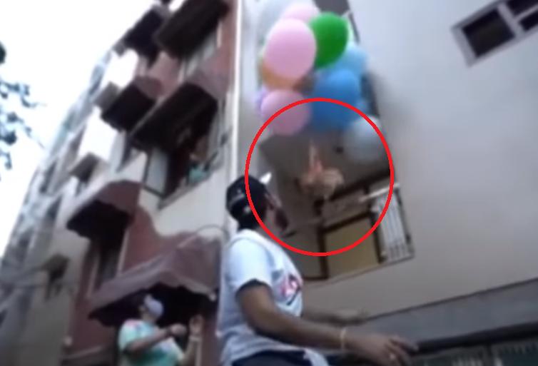 Youtuber de la india ató globos de helio a su perrito pomerania.PNG