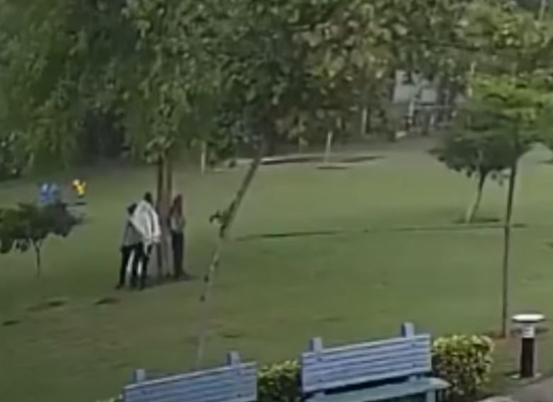 rayo cae sobre cuatro personas bajo un árbol en India