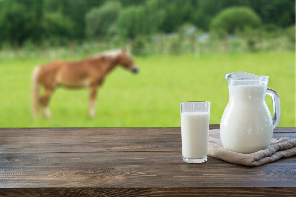 Fresh koumiss milk in glass on wooden table and blurred landscape with horse on green summer meadow.Healthy eating. Rustic style