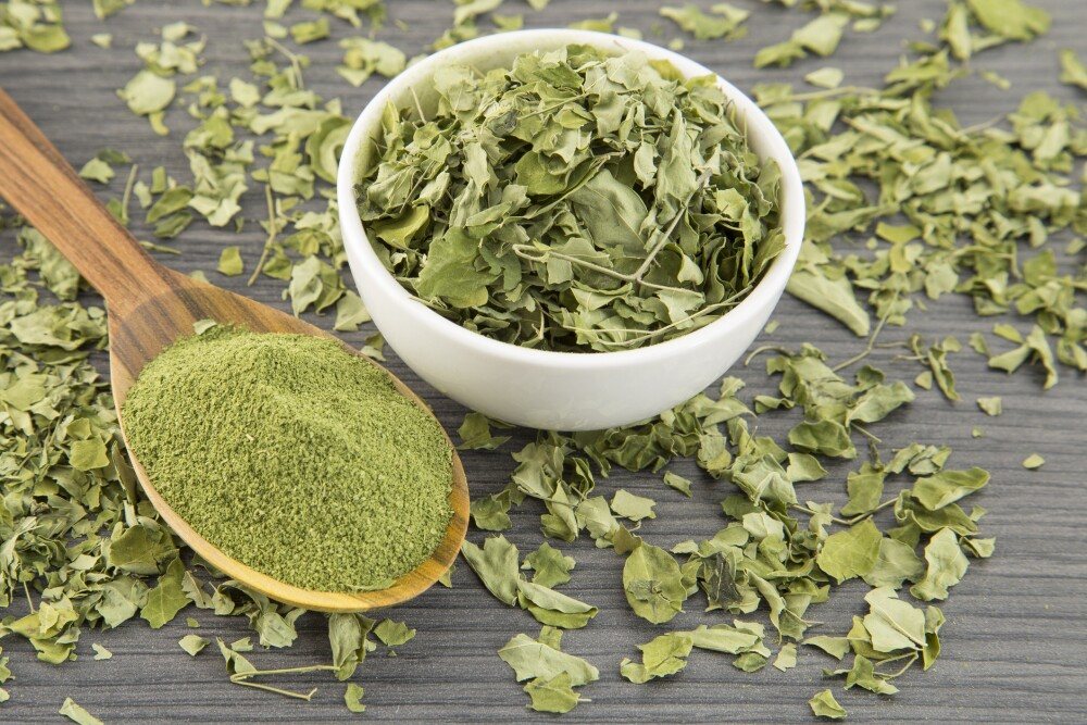 Moringa leaves and moringa powder - Moringa oleifera.