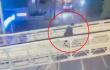 caso de médico que disparó contra asaltantes en Bogotá.png