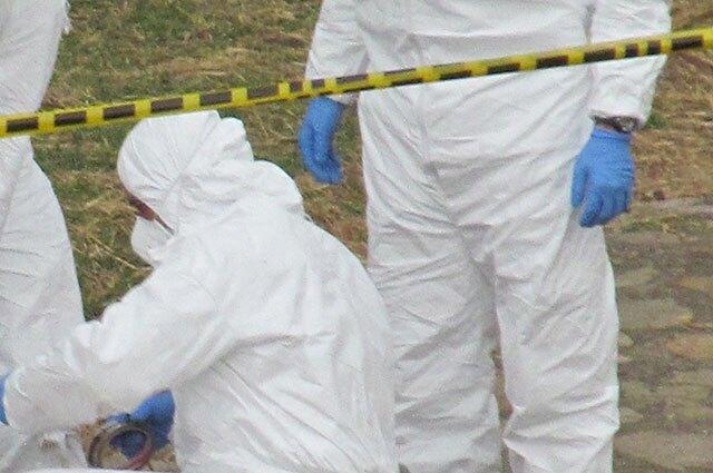 hallan cadaver de joven a la orilla del rio Tulua le dispararon en la cabeza foto referencia archivo colprensa.jpg