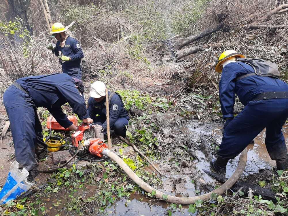 374408_BLU Radio //La conflagración afectó 135 hectáreas del parque// Foto: Parques Nacionales Naturales