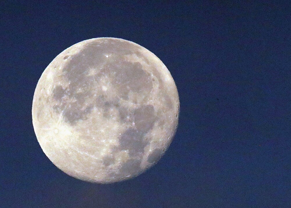 356402_luna-afp-.jpg