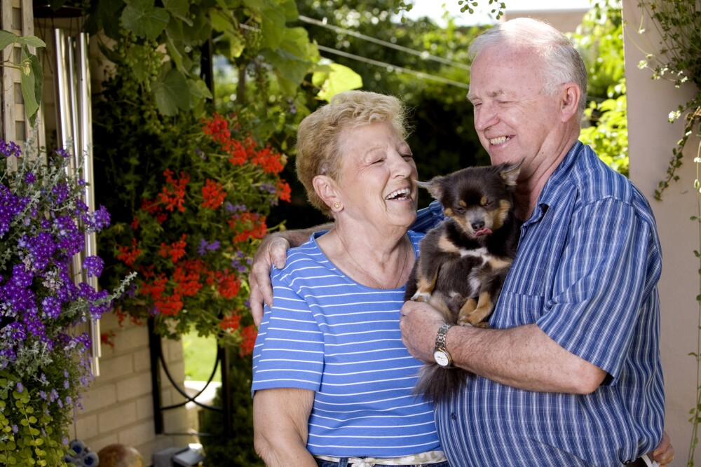 Smiling senior couple holding a puppy