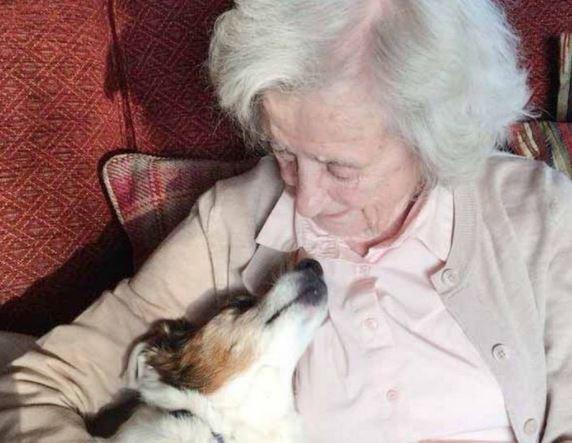Anciano adoptó a perro viejo