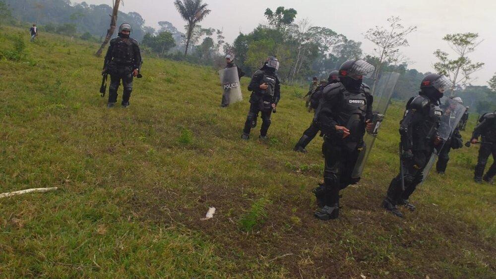 Erradicación de cultivos en Anorí, Antioquia.jpeg