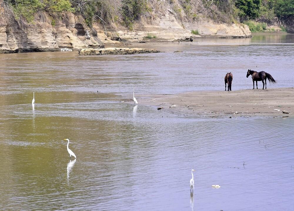 328960_Foto: Blu Radio - Río Magdalena / AFP