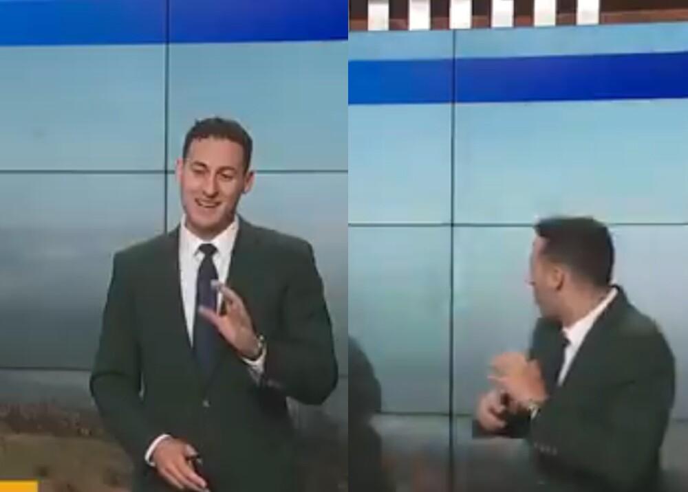 reportero se asusta al ver un pájaro en vivo