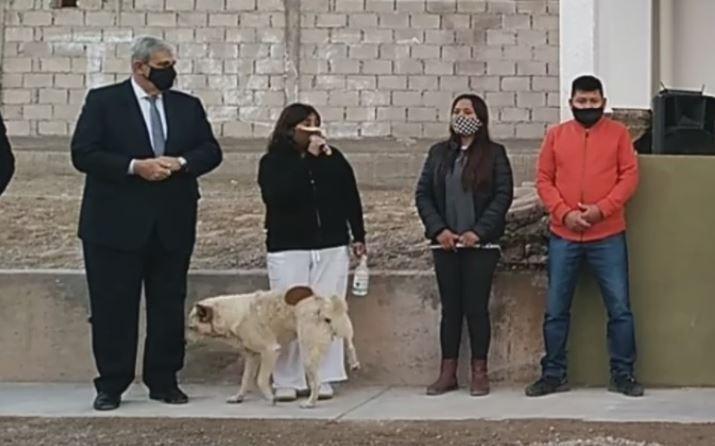 perro orina a alcaldesa.JPG