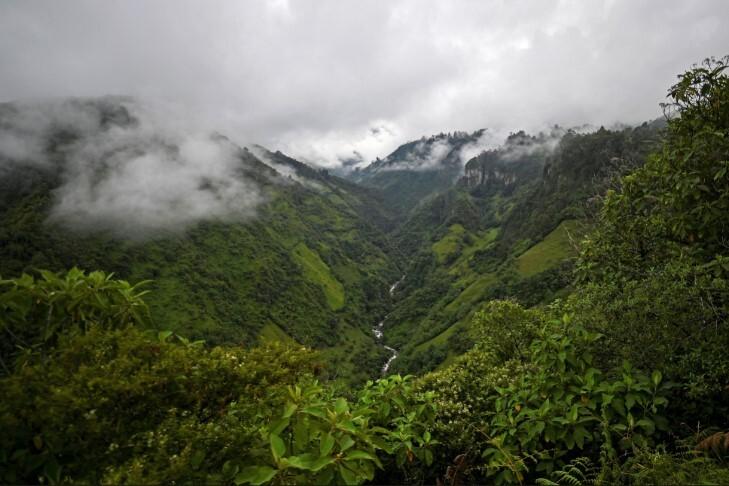 medioambiente-parque nacional purace- colombia .jpg