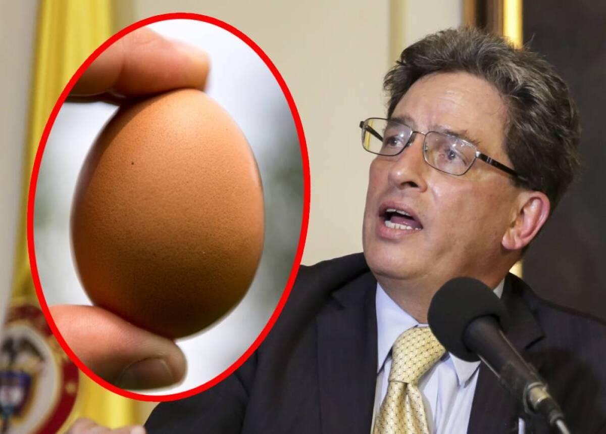 """Quedo como un zapato"""": ministro de Hacienda dijo que una docena de huevos  cuesta $1.800"""
