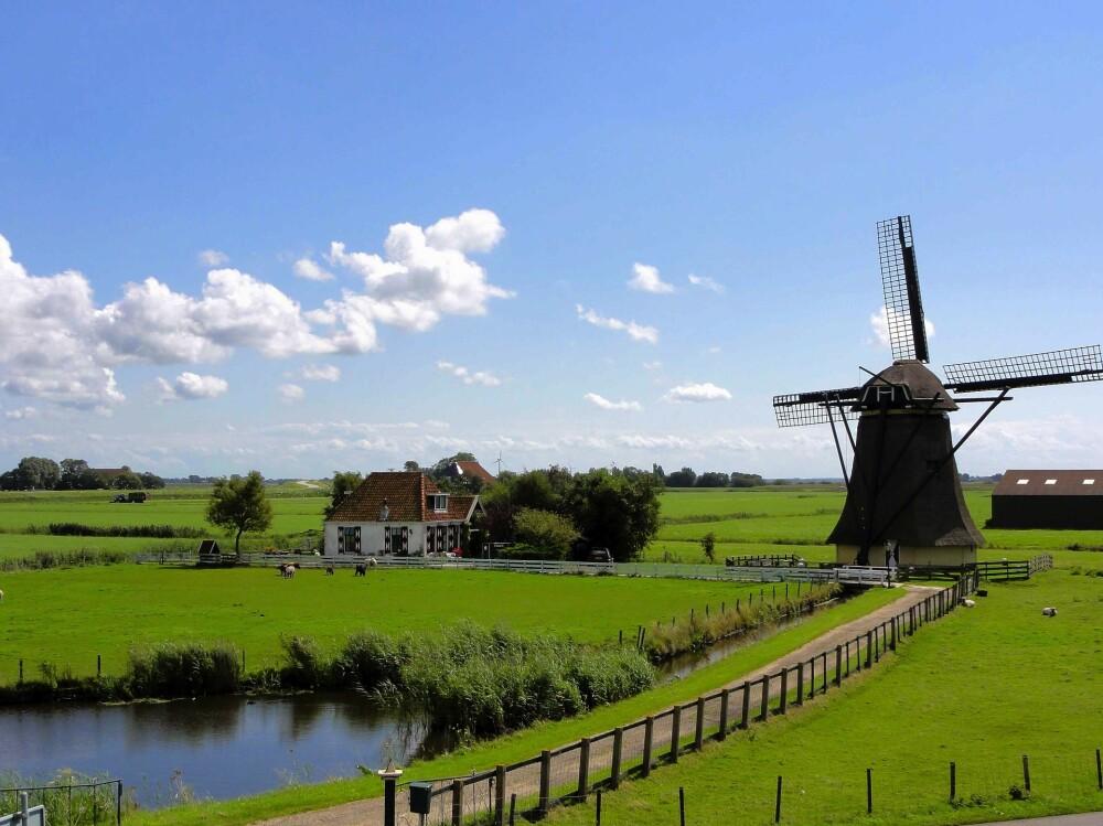 El sujeto fue captado al parecer en la ciudad de Roosendaal en los Países Bajos