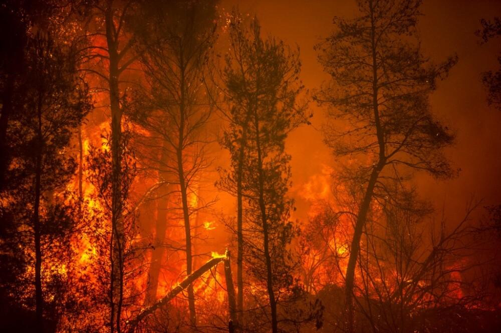 Incendio forestal en Grecia
