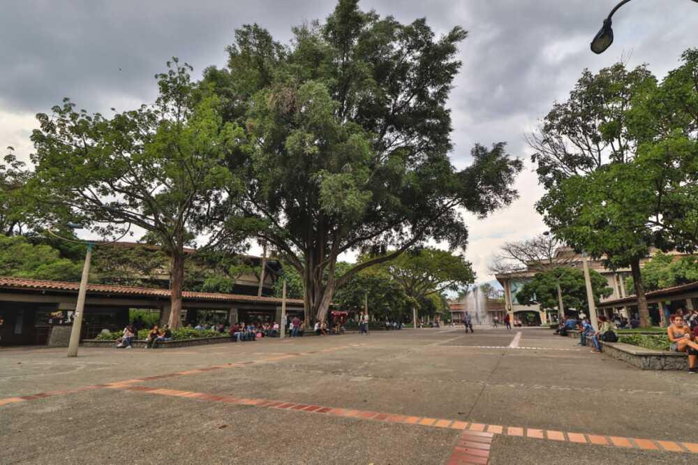 363453_U. de Antioquia. Foto: Cortesia Juan Pablo Hernández,