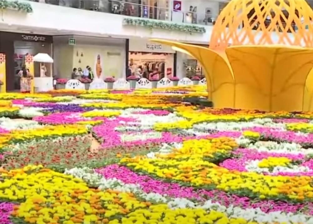 Feria de Flores Foto captura de video.jpg