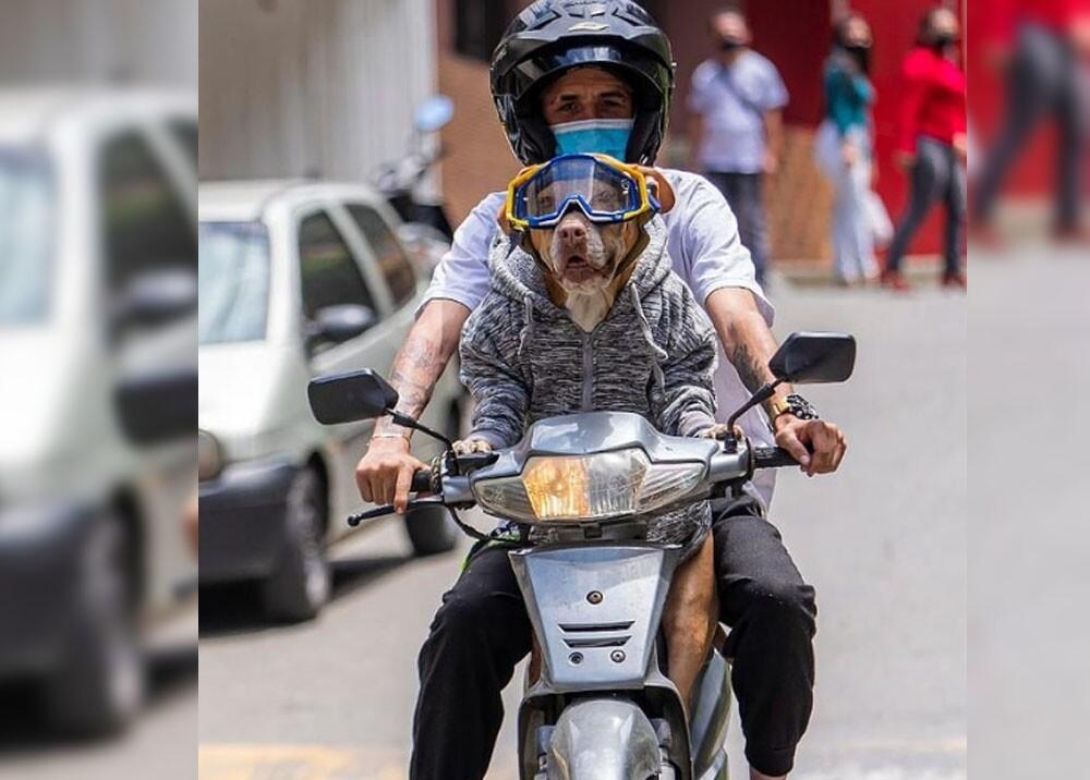 natacha la perra motociclista de antioquia.jpg