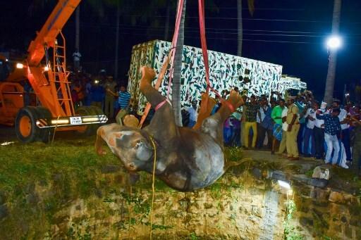 INDIA-ANIMAL-ELEPHANT