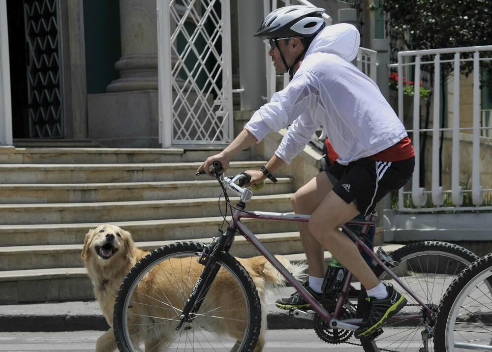 1657_Foto: Bicicleta - AFP