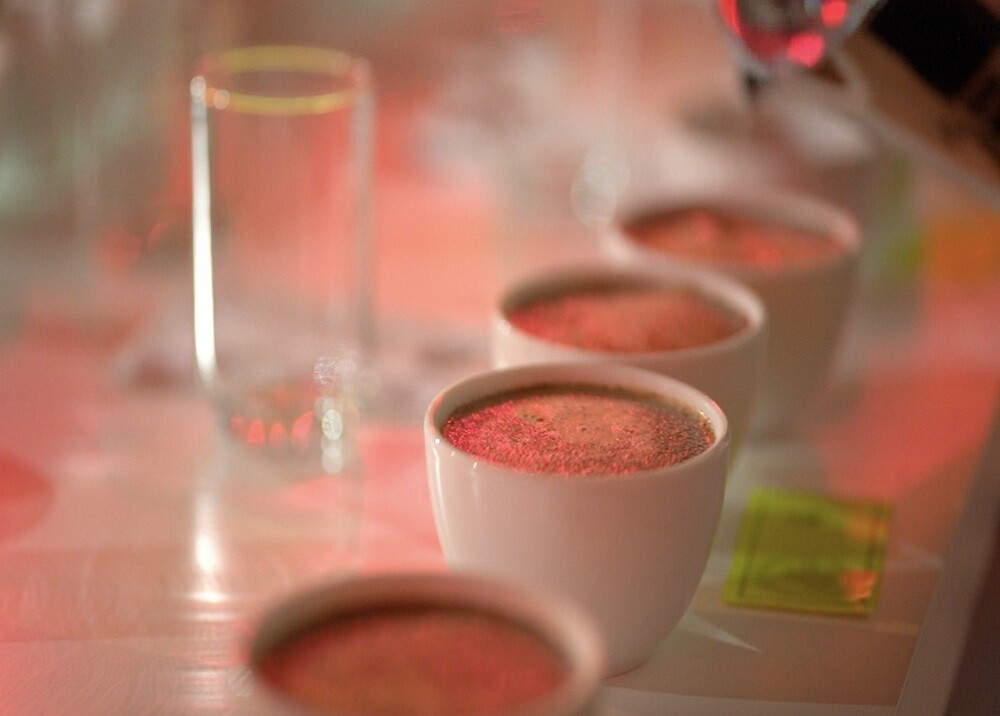 377404_BLU Radio. Tasa de Café / Foto:Cooperativa de Cafeteros de Santander