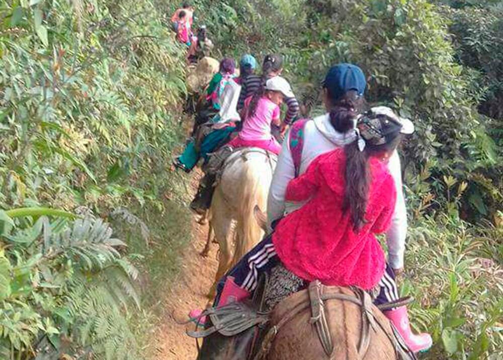 301757_Desplazamiento campesinos en Ituango - Foto: Twitter @soydeituango