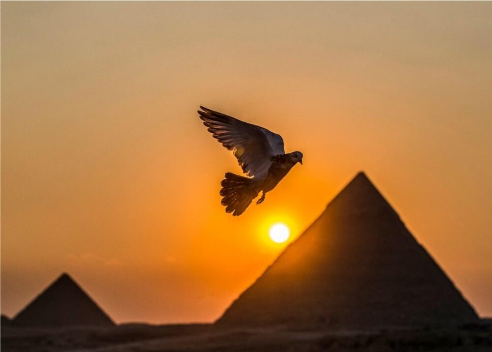 Pirámides de Egipto referencia Foto AFP (1).jpg