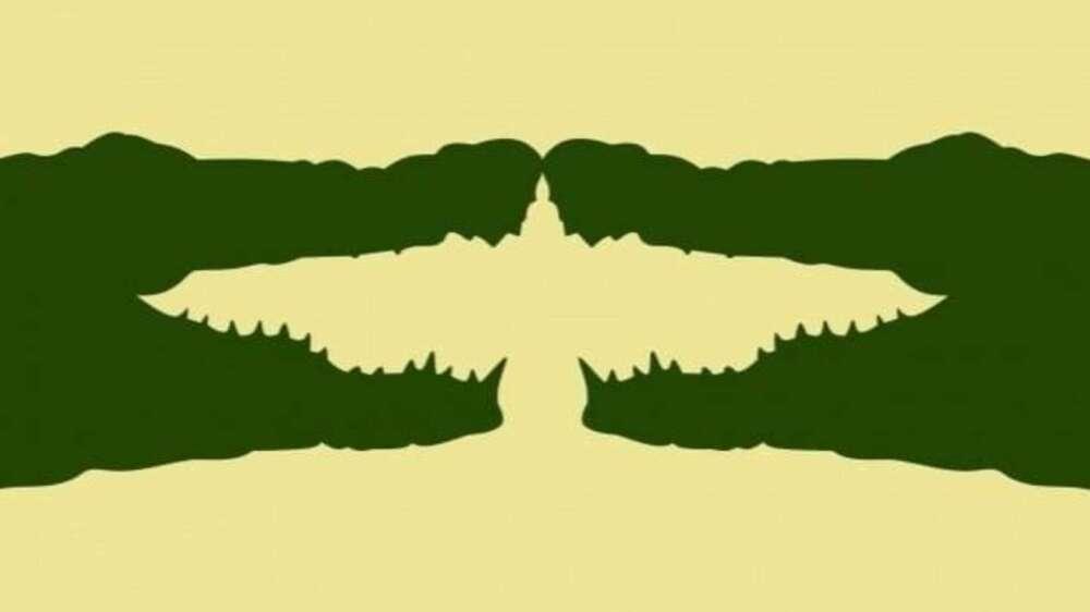 Test del ave o cocodrilo.jpg