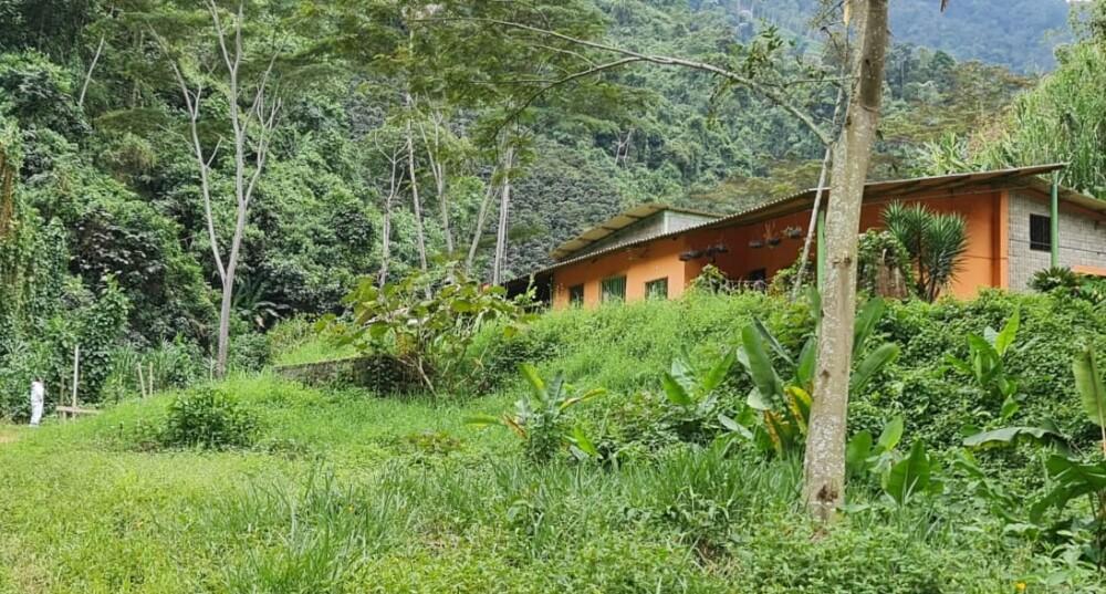 Finca donde ocurrió masacre en Andes, Antioquia.jpg