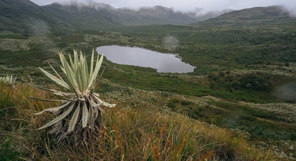 Parque Nacional Natural Chingaza.jpg