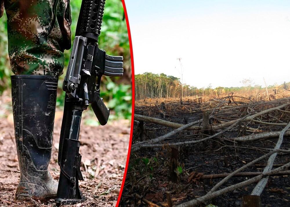 371407_Deforestación en Meta es atribuida a disidencias // Fotos: AFP, Parques Nacionales