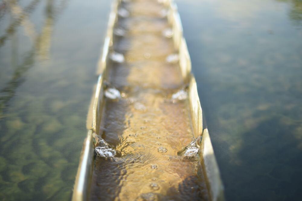 Agua turbia.jpg