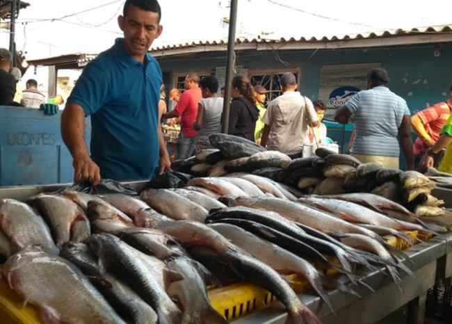 335783_Blu Radio/ Venta de pescado en Barranquilla. Foto: BLU Radio