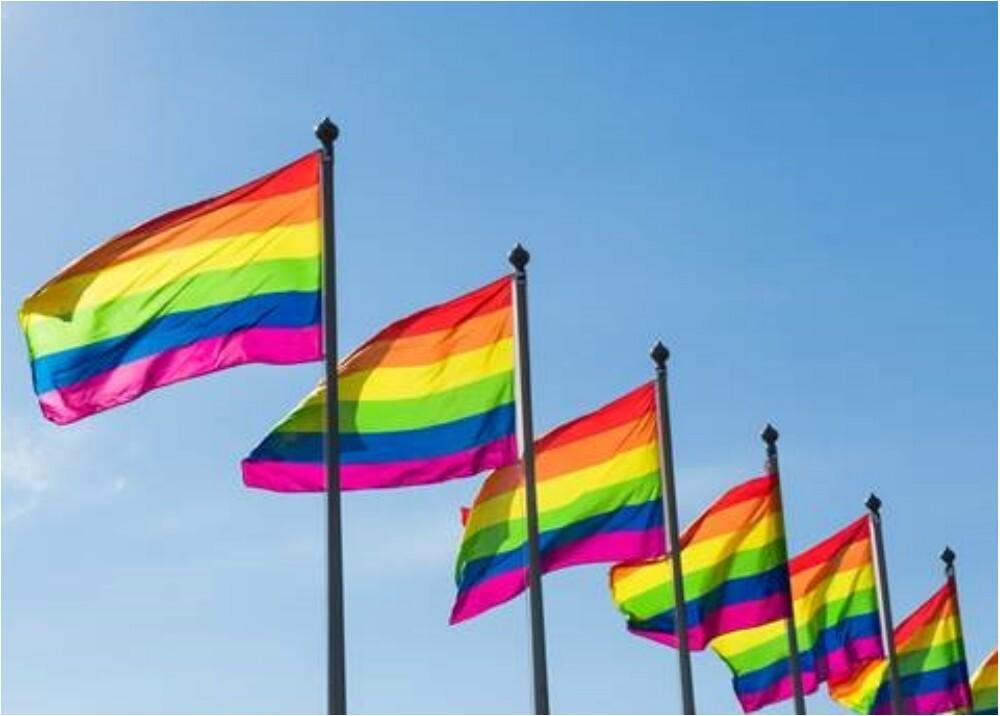 286872_Blu Radio. Marcha LGBTI. Foto: SAP